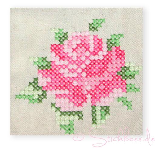 rose-detail